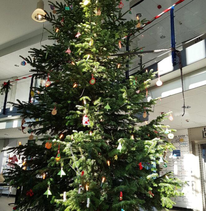 Traditionelles Weihnachtsbaumschmücken im EBC